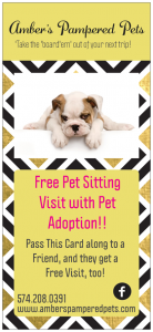 Free visit with pet adoption