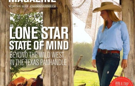 Texas Article