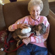 Assisted Living Facilities Pet Care – Pet Sitter in South