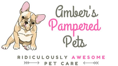 Pet Sitter in South Bend, IN | Amber's Pampered Pets
